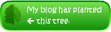 My blog has planted a beech tree